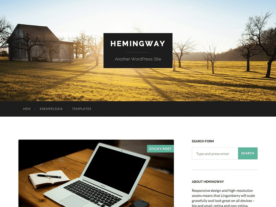 Best Free WordPress Blog Themes - Hemingway