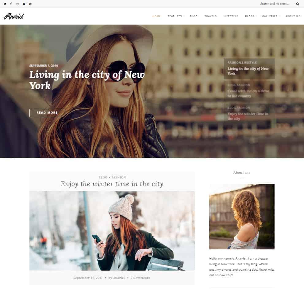 Free WordPress Blog Theme - Anariel