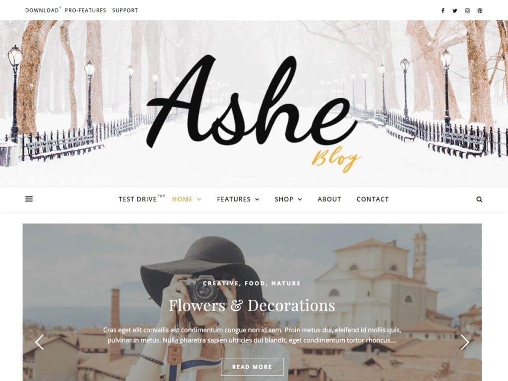 Free WordPress Blog Theme - Ashe