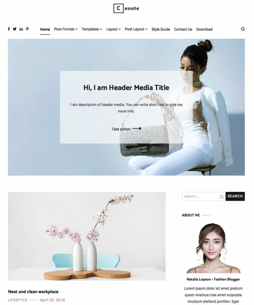 Free WordPress Blog Theme - Cenote