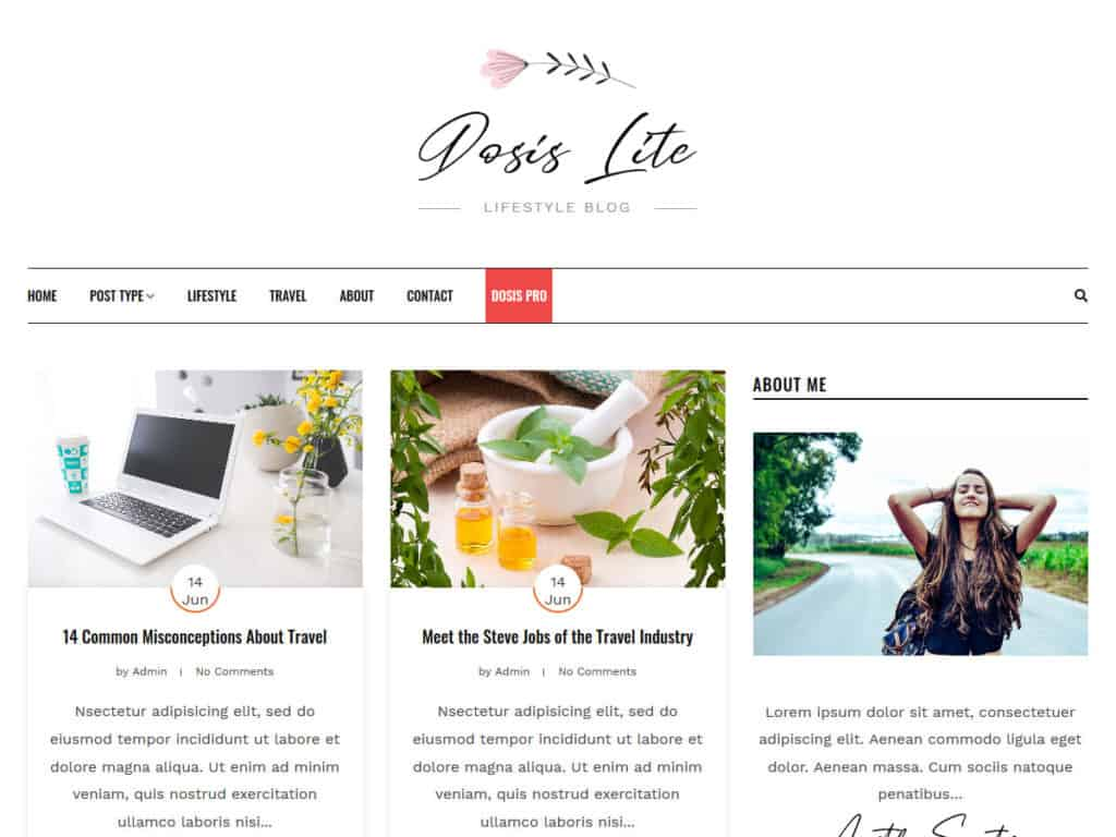 Free WordPress Blog Theme - Dosislite