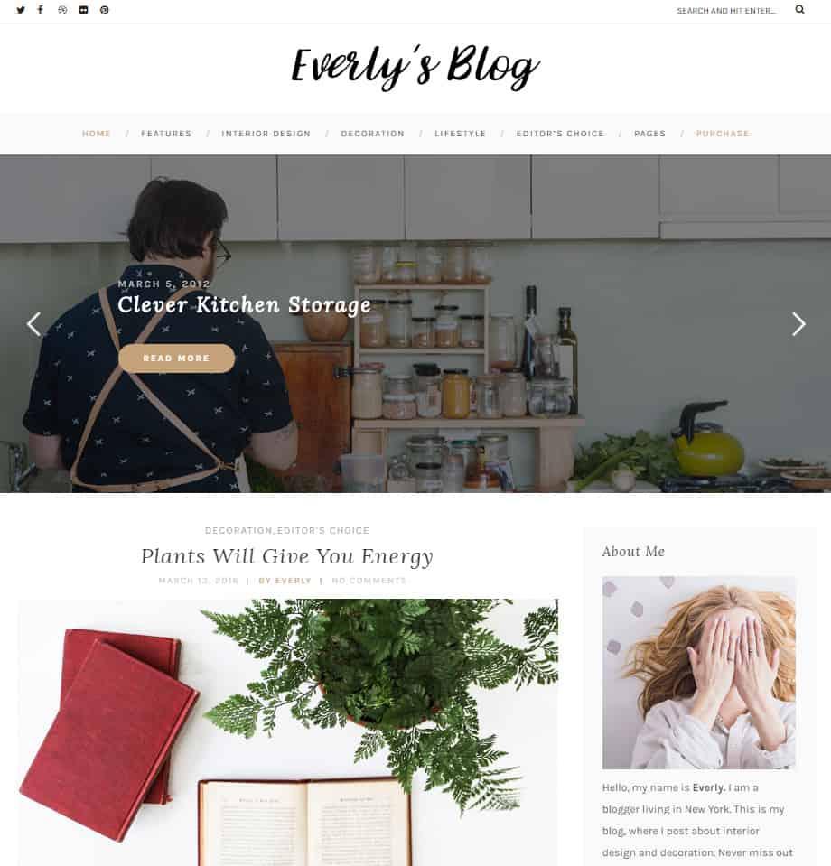 Free WordPress Blog Theme - Everly