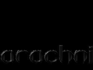 Arachni - website security testing tools online