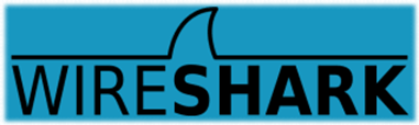 WireShark - website security testing tools online